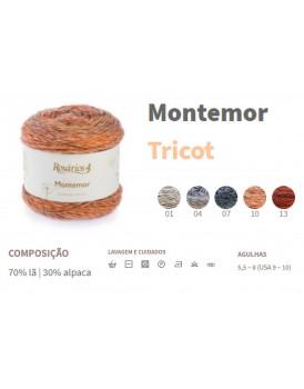 MONTEMOR 100G 708340